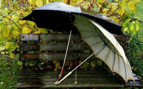 awka-deszcz-parasole.jpeg